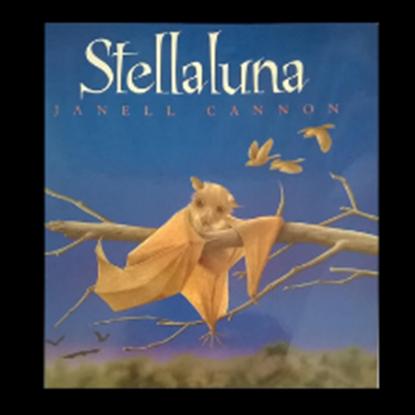 "Picture of ""Stellaluna"""
