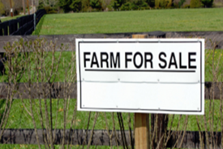Picture for category Farms For Sale